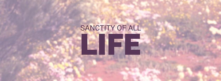 sanctity of all life