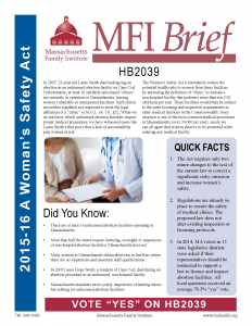 2015 BRIEF A Woman's Safety Act