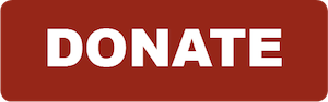 Donate Button small